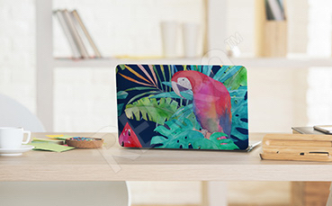 Naklejka papuga na laptopa