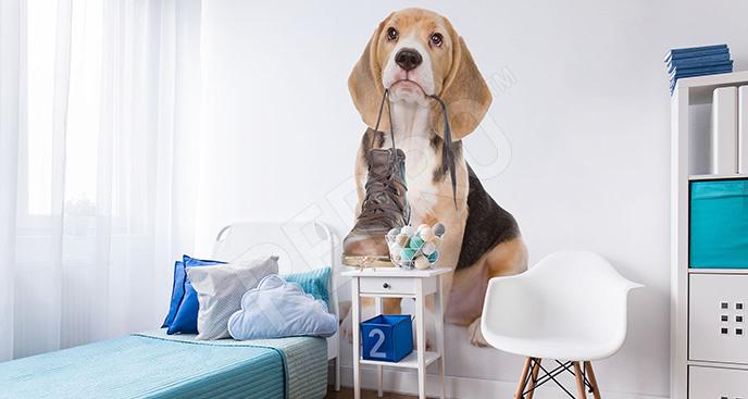 Naklejka z psem do pokoju nastolatka