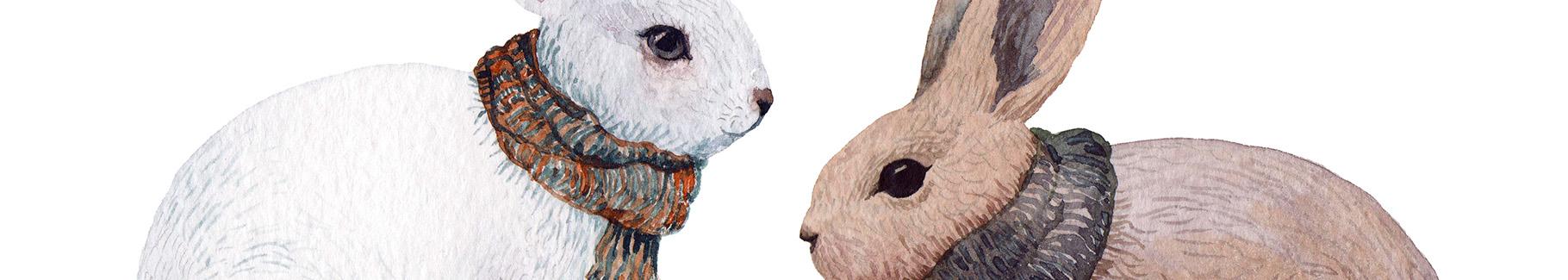 Naklejka ze zwierzętami: króliki