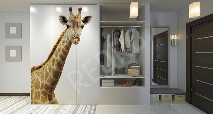 Naklejka żyrafa na szafę