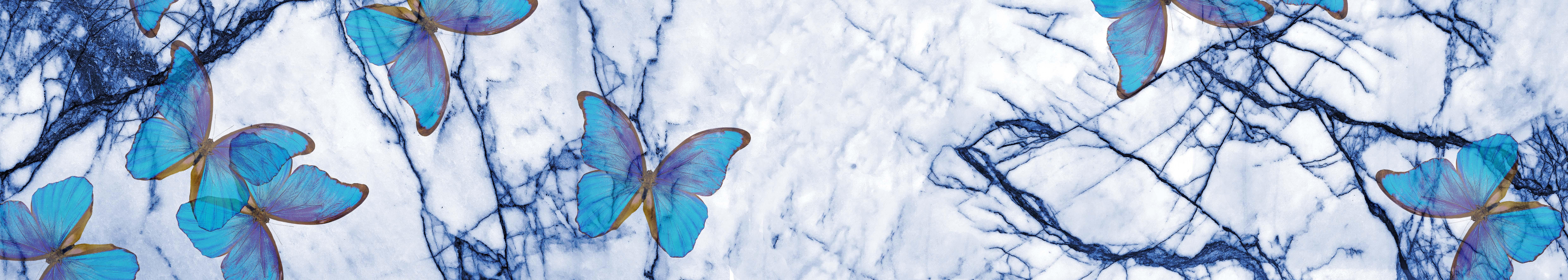 Niebieski plakat motyle