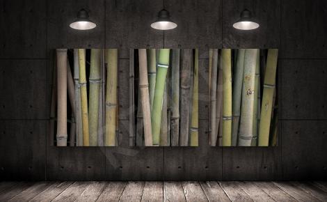 Obraz bambus tryptyk
