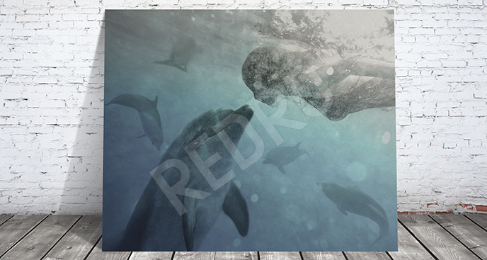 Obraz delfin i kobieta