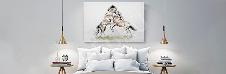 Obraz dwa konie na polanie