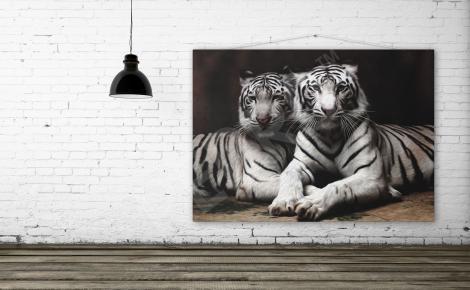 Obraz dwa tygrysy