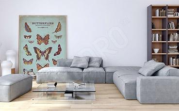 Obraz kolorowe motyle retro