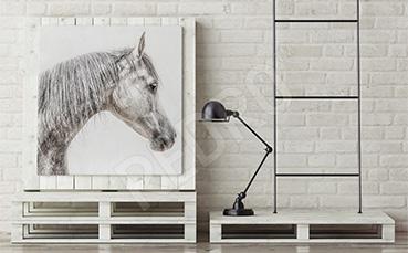 Obraz koń arabski