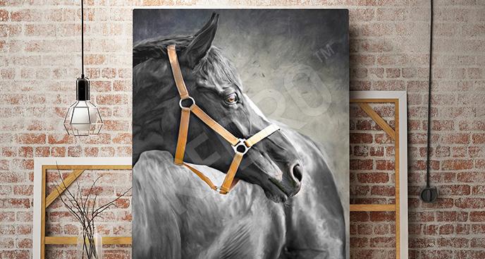 Obraz koń maści karej