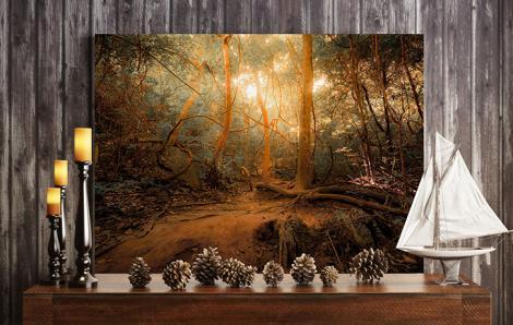 Obraz krajobraz leśny