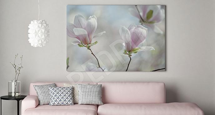 Obraz krzew magnolii