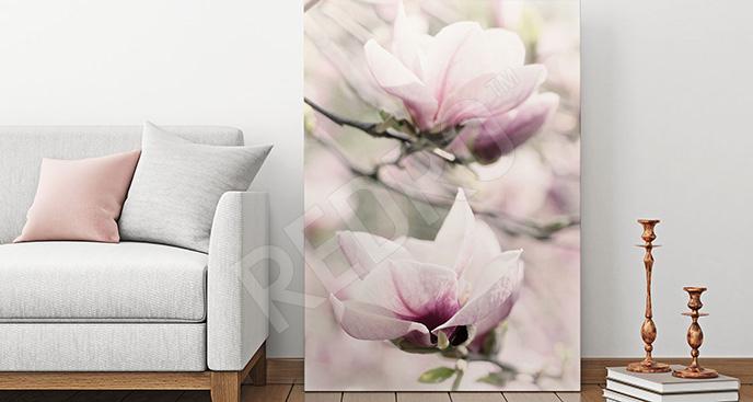 Obraz kwitnąca magnolia