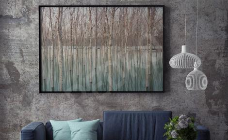 Obraz las brzozowy do salonu