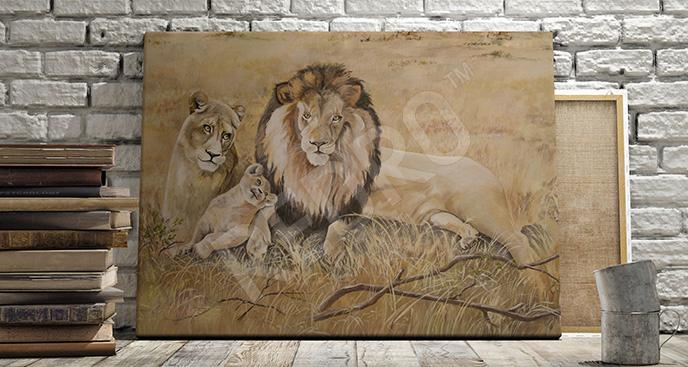 Obraz lwy w Afryce