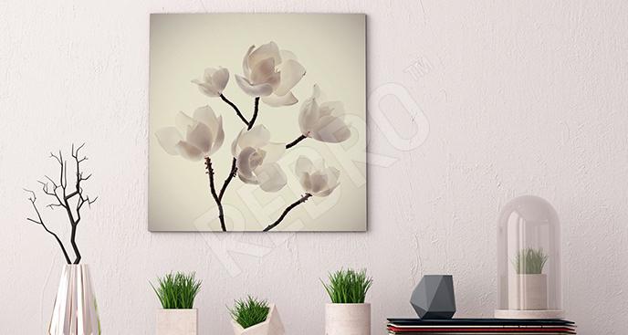 Obraz magnolia biała