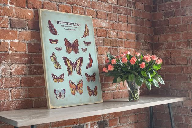 Obraz - Motyle vintage