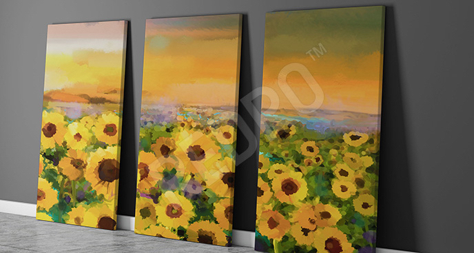 Obraz pole słoneczników