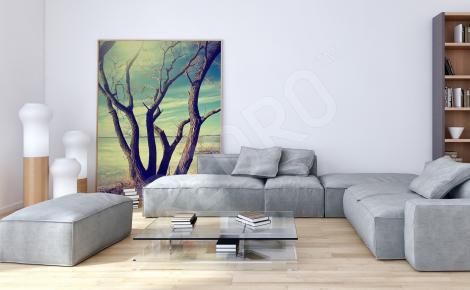 Obraz samotne drzewo