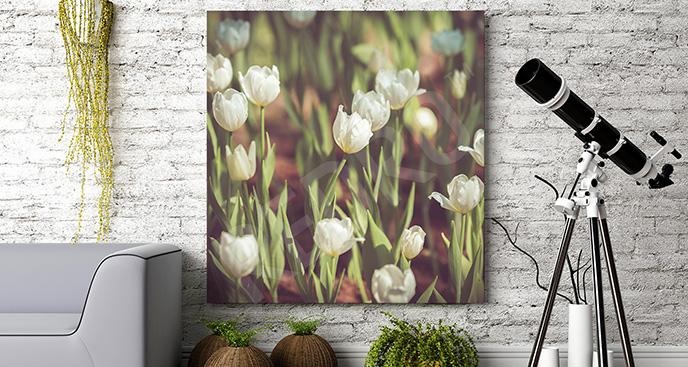Obraz tulipany w ogrodzie