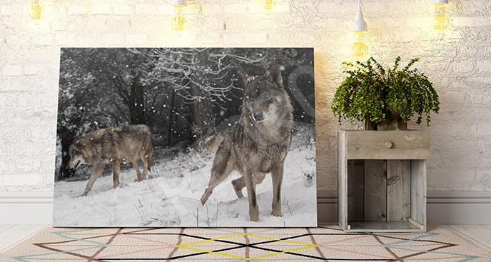 Obraz wilki w śniegu