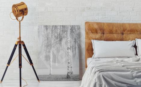 Obraz z białą brzozą we mgle