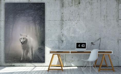 Obraz z białym wilkiem