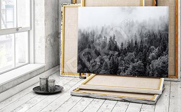 Obraz z czarno-białym krajobrazem