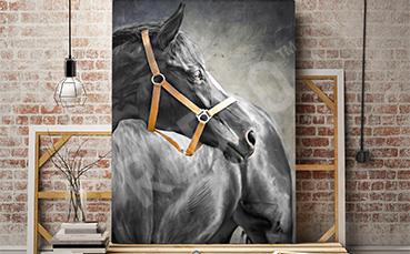 Obraz z czarnym koniem