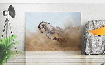Obraz z koniem w galopie