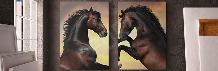 Obraz z końmi