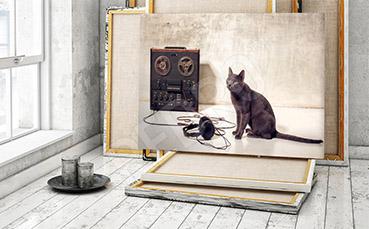 Obraz z kotem do przedpokoju