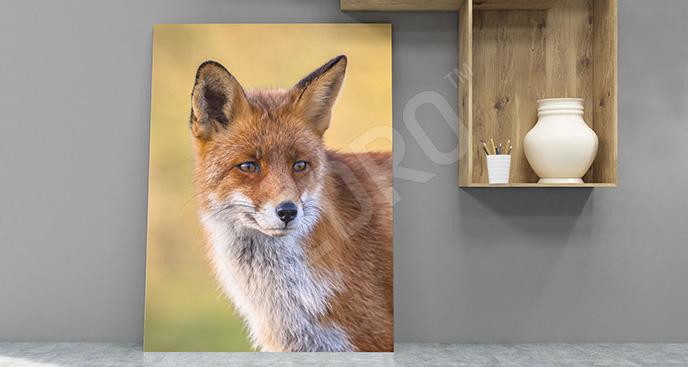 Obraz z lisem do przedpokoju