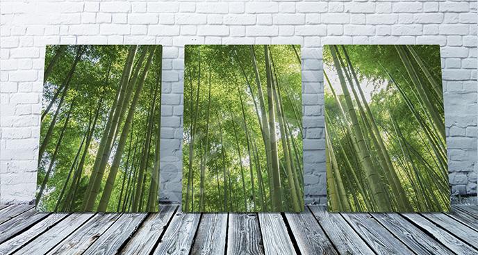 Obraz zielony las bambusowy