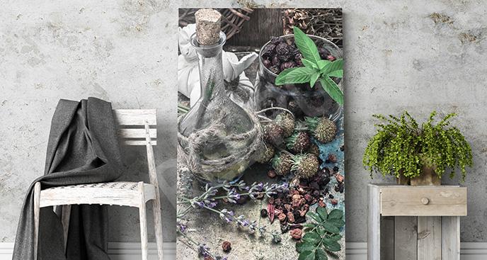 Obraz zioła do salonu