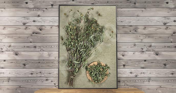 Obraz zioła lecznicze