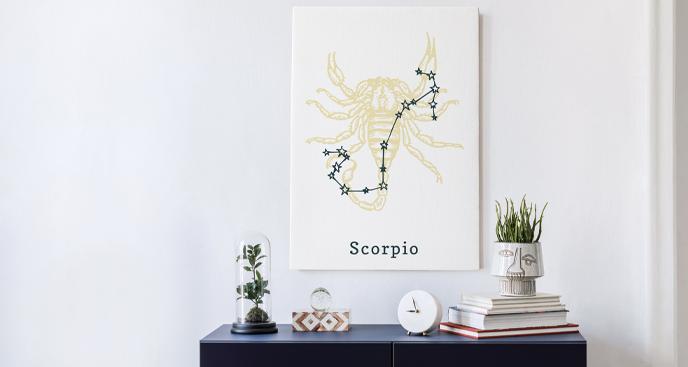 Obraz znak zodiaku Panna