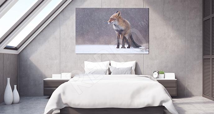 Obraz zwierzę zimą