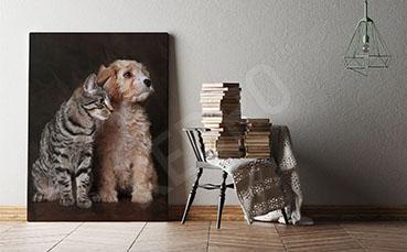 Obraz zwierzęta domowe