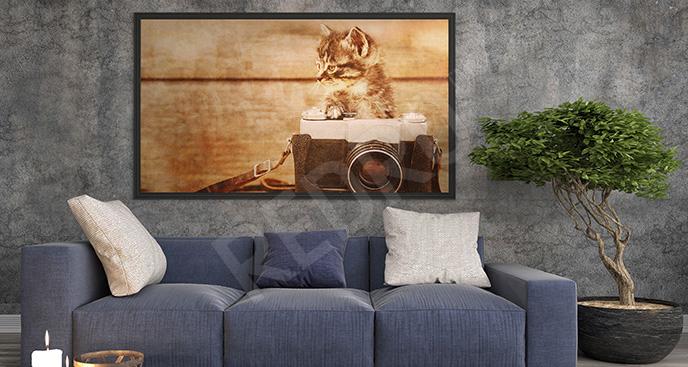 Plakat kociak w stylu retro