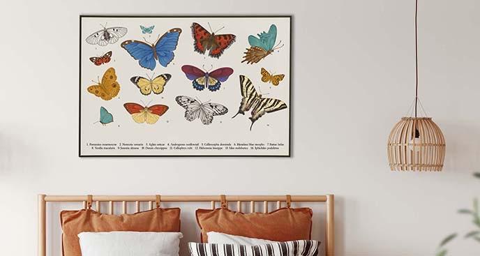 Plakat kolorowe owady