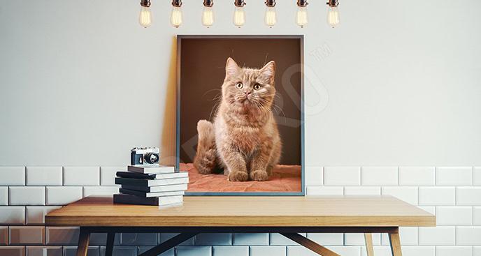 Plakat kot brytyjski
