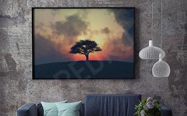 Plakat krajobraz i samotne drzewo