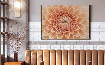 Plakat kwiat makrofotografia