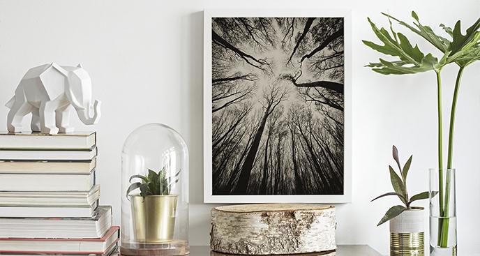 Plakat mroczne drzewa
