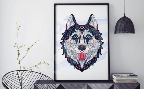 Plakat pies Husky