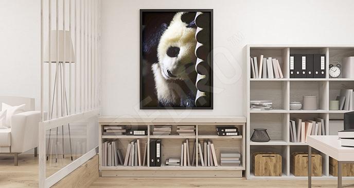 Plakat śpiące zwierzę