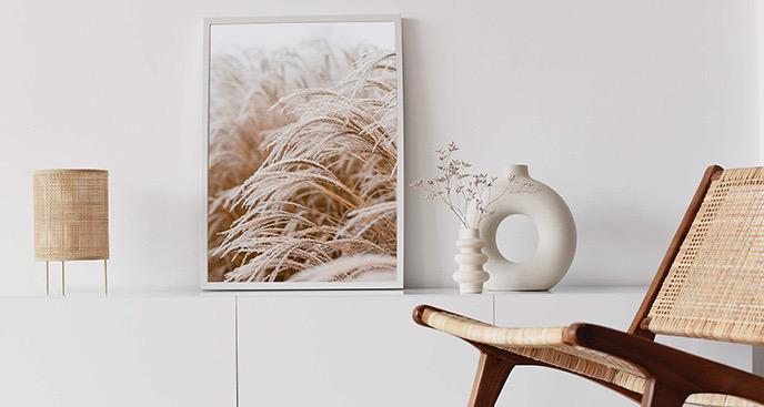 Plakat trawa pampasowa