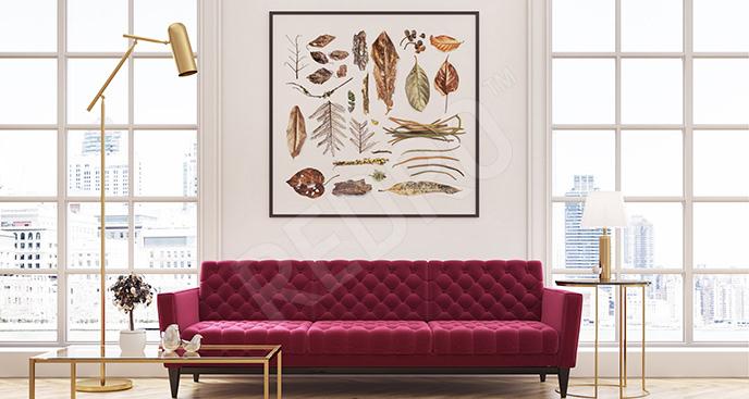Plakat zasuszone rośliny