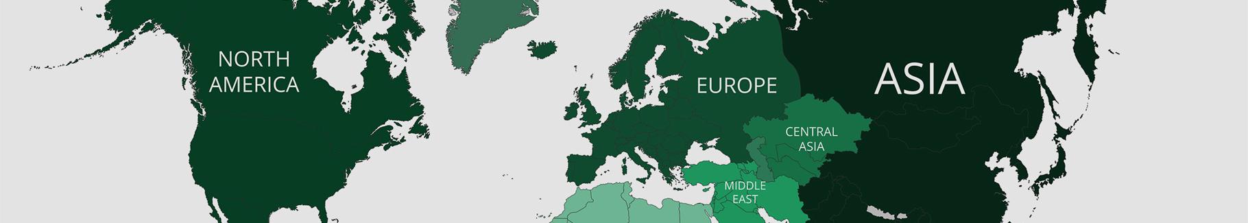 Plakat zielona mapa