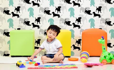 Tapeta kolorowe psy dla dzieci