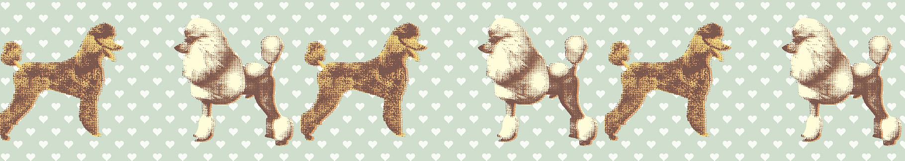 Tapeta motyw psów - glamour